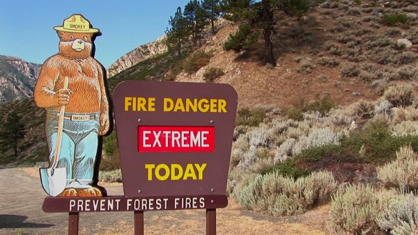 fire risk in forests