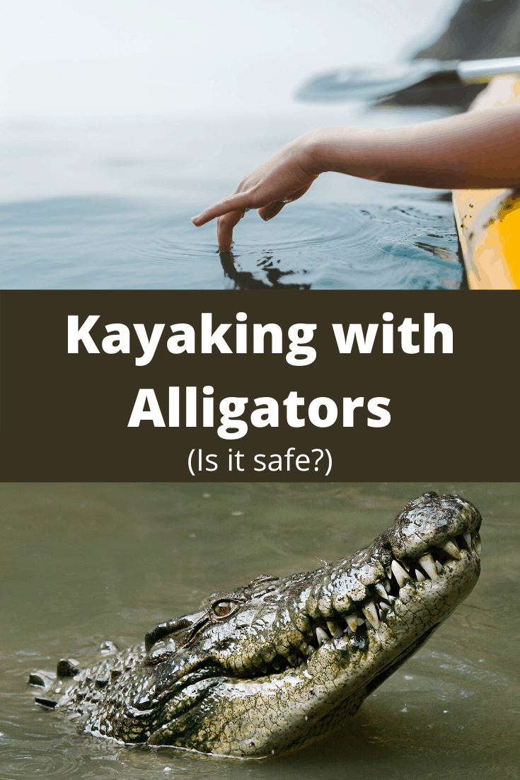 kayaking with alligators pin3
