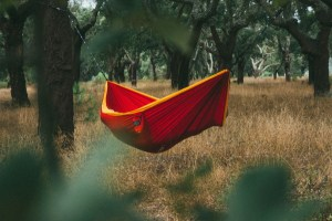 backpacking hammock feature image