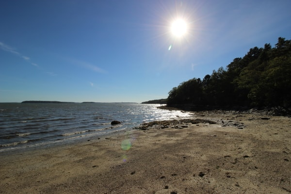 wolfe's neck state park beach
